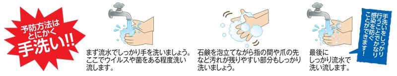 2017106.jpg